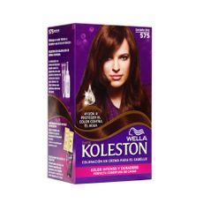 Tinte-Koleston-Castaño---575-1-25401