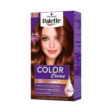 Tinte-Palette-Color-Creme-Color-5-68-1-138489