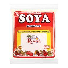 Harina-de-Soya-Tostada-Renacer-Bolsa-500-g-1-86325