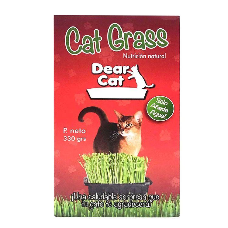 Dear-Cat-Grass-Para-Gatos--Dear-Car-Grass-Para-Gatos-1-153818