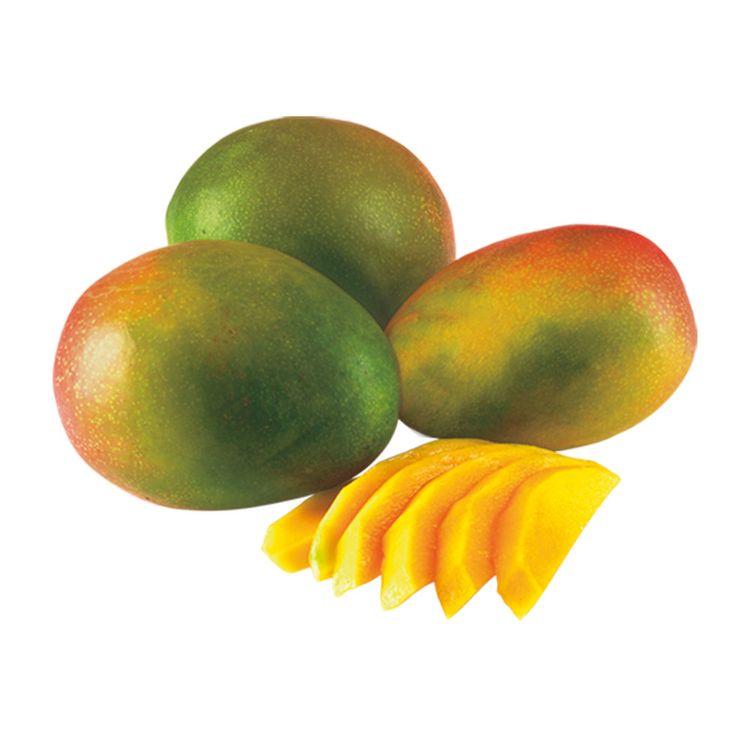 Mango-Kent-x-kg-1-181224