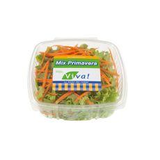 Mix-Primavera-Viva-Caja-120-g-MIXPRIM120-GR-1-76034