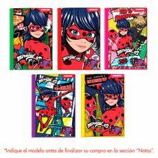 Folder-N-Fantasia-Of-Ladybug-Vinifan-1-151136