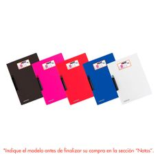 Vinifile-Pres-Swing-Clip-Colores-Vinifan-1-151116