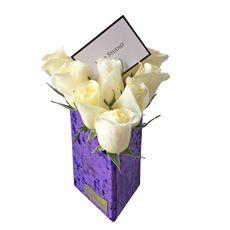 Tria-Purple-10-Rosas-1-33242381