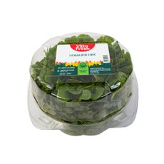 Lechuga-Bebe-Verde-Vitta-Fresh-90-g-1-17191000