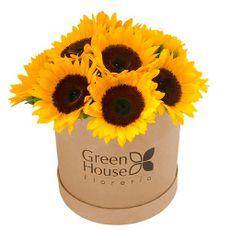 Green-House-Box-Girasoles-1-35130401