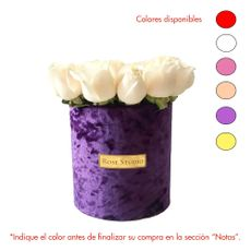 Rose-Studio-Small-Box-de-15-Rosas-Catalina-Purple-1-30051707