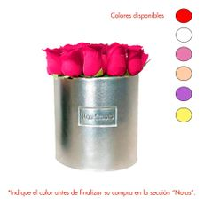 Rose-Studio-Medium-Box-de-25-Rosas-Lia-Metalico-1-30051713