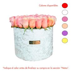Rose-Studio-Box-de-45-55-Rosas-Amalia-White-1-30051718