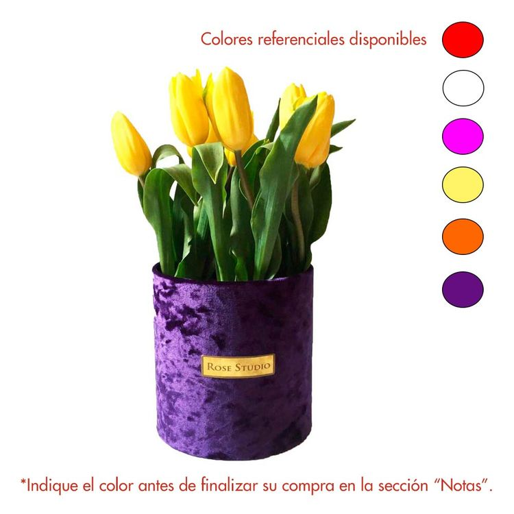 Rose-Studio-Small-Box-de-10-Tulipanes-Tulip-Box-Purple-1-30051726