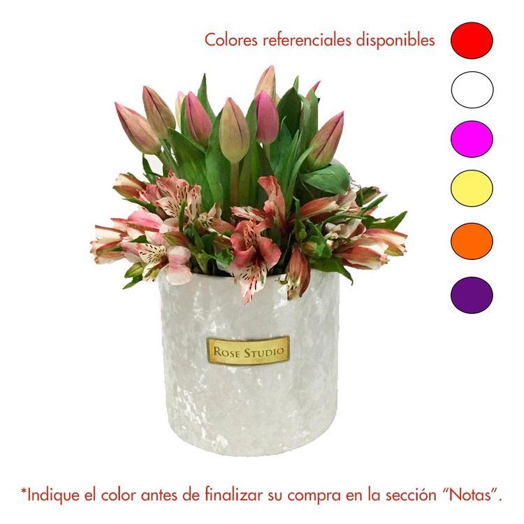 Rose-Studio-Small-Box-Arreglo-Floral-Helena-Tulip-White-1-30051729