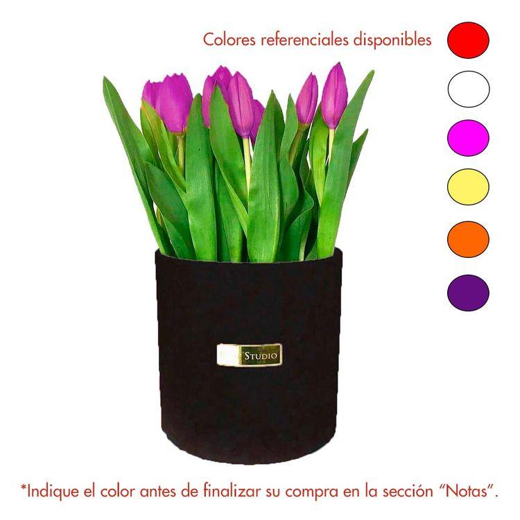 Rose-Studio-Medium-Box-de-25-Tulipanes-Tulip-Black-1-30051732