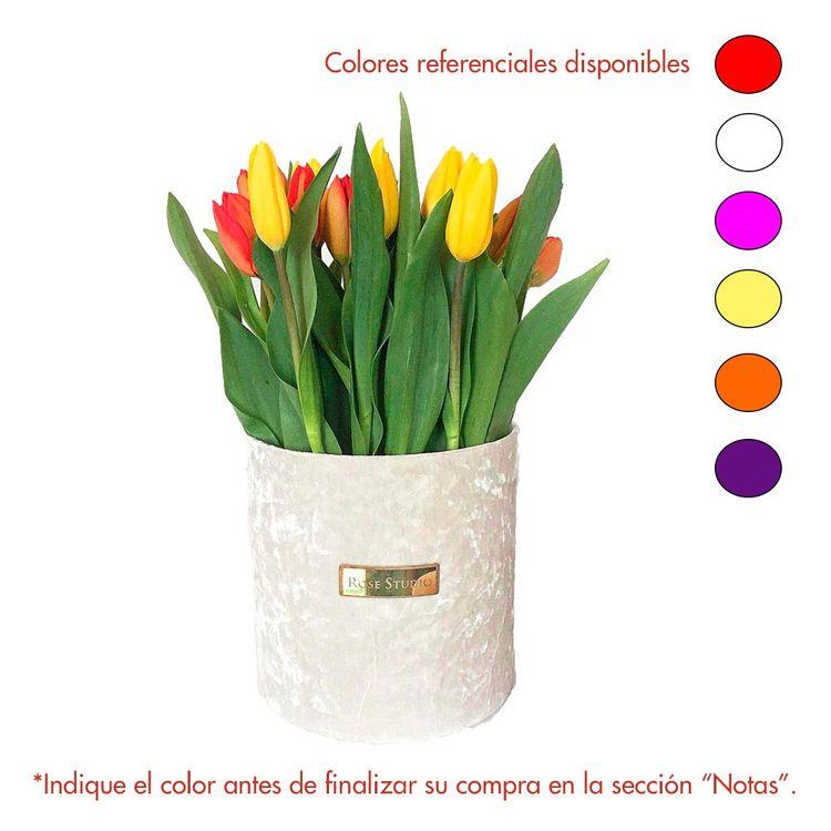 Rose-Studio-Medium-Box-de-25-Tulipanes-Tulip-White-1-30051733