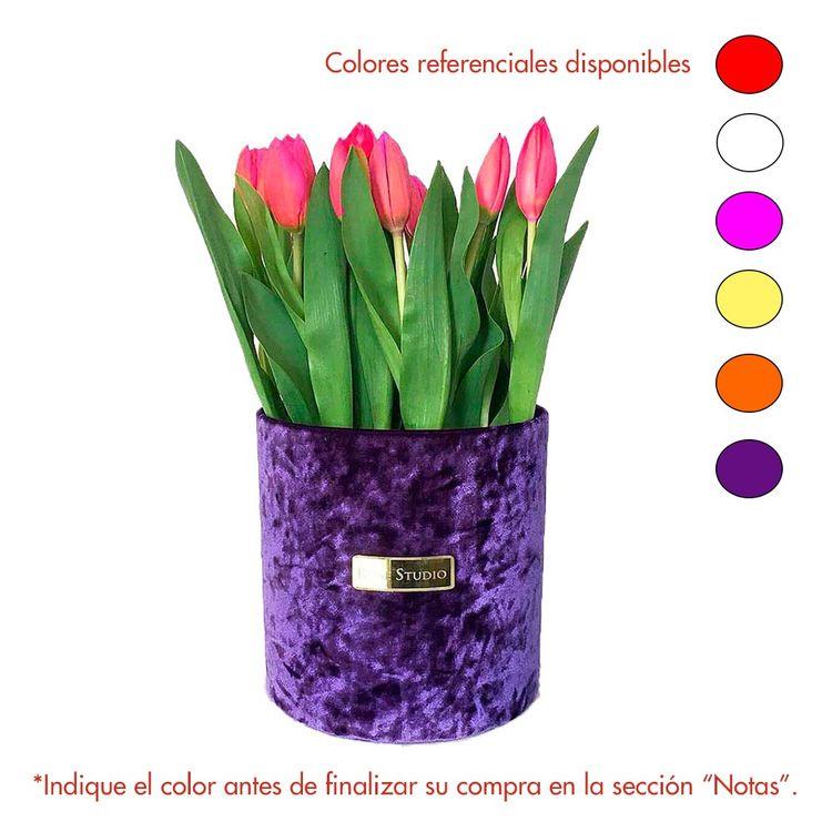 Rose Studio Medium Box De 25 Tulipanes Tulip Purple Wong