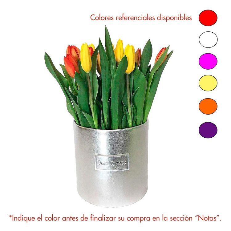 Rose-Studio-Medium-Box-de-25-Tulipanes-Tulip-Metalico-1-30051735