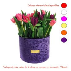 Rose-Studio-Deluxe-Box-de-38-Tulipanes-Tulip-Purple-1-30051739
