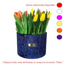 Rose-Studio-Deluxe-Box-de-38-Tulipanes-Tulip-Blue-1-30051740