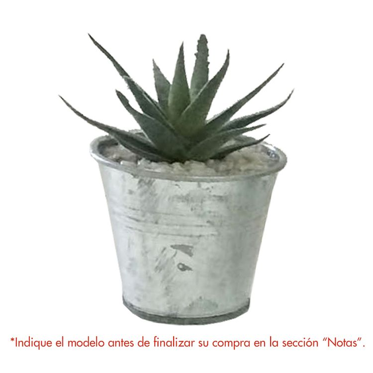 Krea-Suculenta-Maceta-Mini-Tropical-12d-Oi19-1-32001915