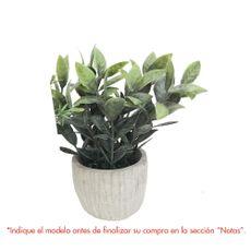 Krea-Planta-en-Maceta-Cemento-Rayado-2d-Oi19-1-32001927
