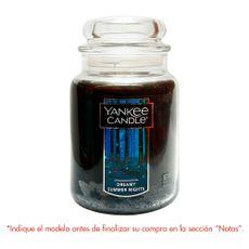 Large-Jar-Yankee-Candles-1-55193