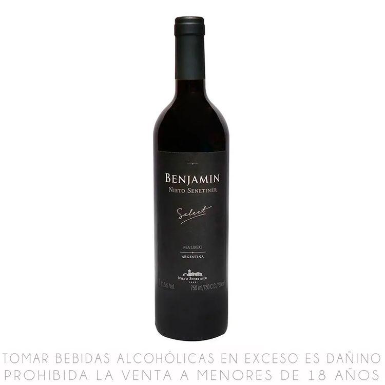 Vino-Tinto-Benjamin-Select-Malbec-Botella-750-ml-1-15159431
