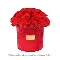 Green-House-Arreglo-Floral-de-Rosas-Coleccion-Rubi-1-126671727