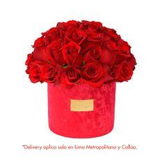 Green-House-Arreglo-Floral-de-Rosas-Coleccion-Rubi-1-126671728