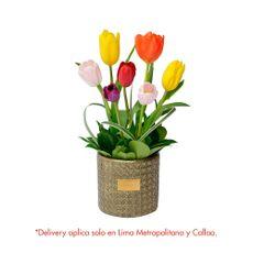 Green-House-Arreglo-Floral-de-Tulipanes-Glam-Gold-1-126671730