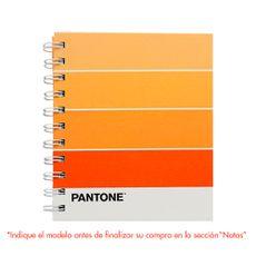 Libreta-Espiralada-A6-Pantone-Dgnottas-Surtido-1-24591889
