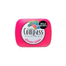 Caramelos-de-Menta-Wildberry-Compass-Lata-14-gr-1-93684
