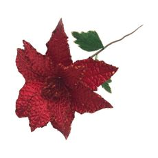 Krea-Poinsettia-20-cm-Joy-1-122726749