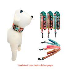 Animal-Planet-Collar-Correa-Premium-para-Mascotas-Talla-S-Sorpresa-1-158956906