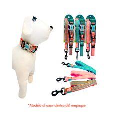 Animal-Planet-Collar-Correa-Premium-para-Mascotas-Talla-L-Sorpresa-1-158956908