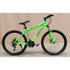 Lucky-Bike-Bicicleta-Monta-era-Aro-26-Verde-1-188375204