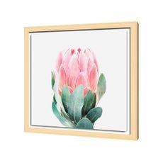 Krea-Canvas-con-Marco-Suculenta-40-x-40-cm-1-154698932