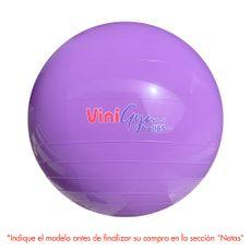 Viniball-Pelota-de-Entrenamiento-Vinigym-Ball-65-Surtido-1-182289943