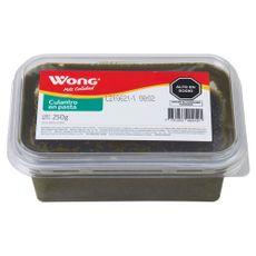 Culantro-en-Pasta-Wong-Pote-250-g-1-203144306