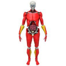 Be-Amazing-Toys-Rompecabezas-3D-Interactive-Human-Body-1-210664639