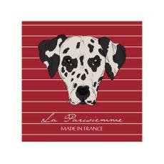 Krea-Canvas-Animales-40-x-40-cm-D-lmata-1-192766265