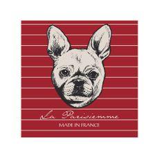 Krea-Canvas-Animales-40-x-40-cm-Bull-Dog-1-192766266